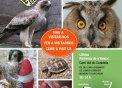 Cartell informatiu de les visites al Centre de Recuperació durant aquest estiu