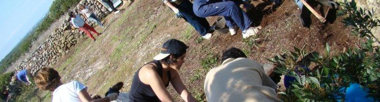 Voluntaris recuperant la funcionalitat d'un aljub de pluvials