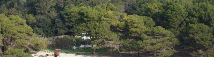 La platja de Macarella acollirà l'Abraçada de dissabte