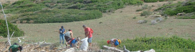 El voluntariat realitzant la neteja.