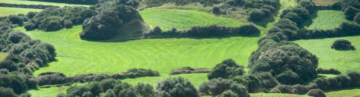 El paisatge en mosaic de Menorca té molts de valors afegits
