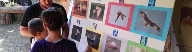 Ja hem identificat plomes en els anteriors tallers.