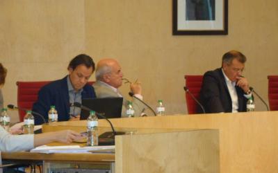 Assistència al Ple del Consell Insular
