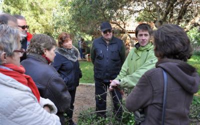 Ignasi Bau, responsable d'Es Viver serà l'encarregat de fer les explicacions.