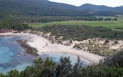 Platja ds Tancats a La Vall d'Algaiarens