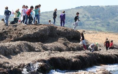 Infants jugant amb sa posidònia en una activitat ambiental a Binimel·là