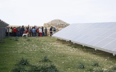 Visita a Son Salomó amb motiu de la Marxa pel Clima