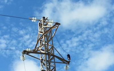 El cable superior provoca la descàrrega quan l'animal es posa i el toca amb les ales