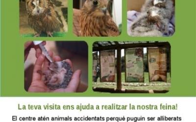 El setembre també podeu visitar l'hospital d'animals