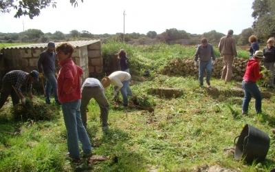 El voluntariat netejant un corral a Son Tarí Nou