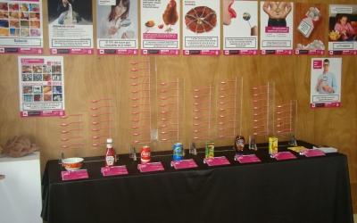 Exposició de VSF-Justícia Alimentària Global