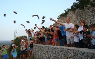 L'amollada de mussols de l'any passat va ser tot un èxit