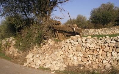 S'han comptat 74 enderrossalls als camins de les platges del sud de Ciutadella.