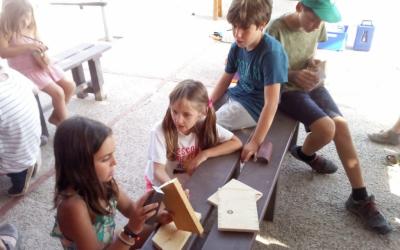 Construcció de caixes niu