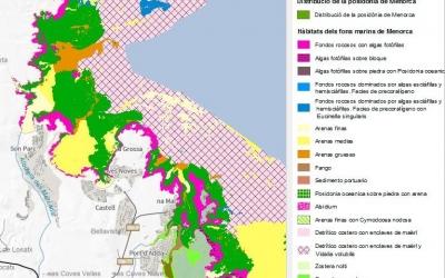 Posidònia, segons cartografia digital IDE Menorca