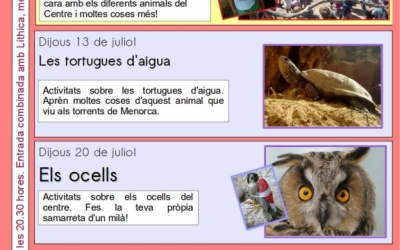 Programa d'activitats en família del mes de juliol.