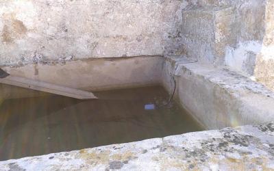 Rampa que permet sortir de l'aigua als animals que cauen al safareig