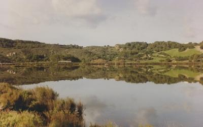 Zona humida de Mongofra Nou
