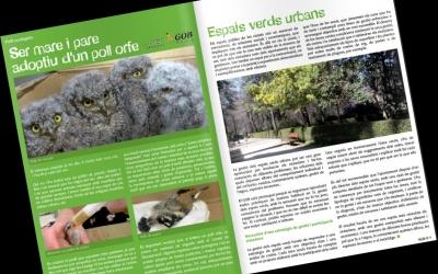 Pàgines interiors d'aquesta edició