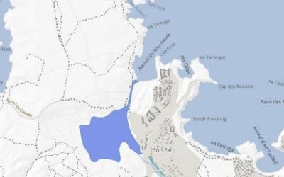 Delimitació oficial de la zona humida de Son Saura