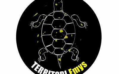 Territori Emys, una iniciativa a Catalunya, València i Menorca per la tortuga d'aigua.