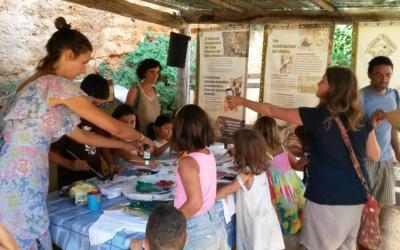 Participa dels tallers en família