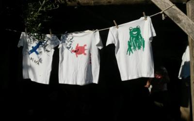 Pinta la teva pròpia samarreta