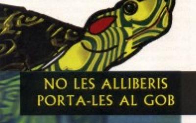 Imatge de la campanya de recollida de tortugues exòtiques